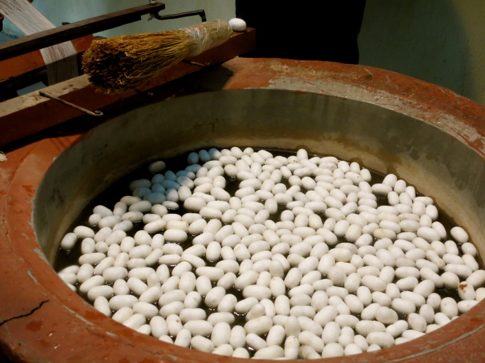 Silk worm cocoons soaking in hot water