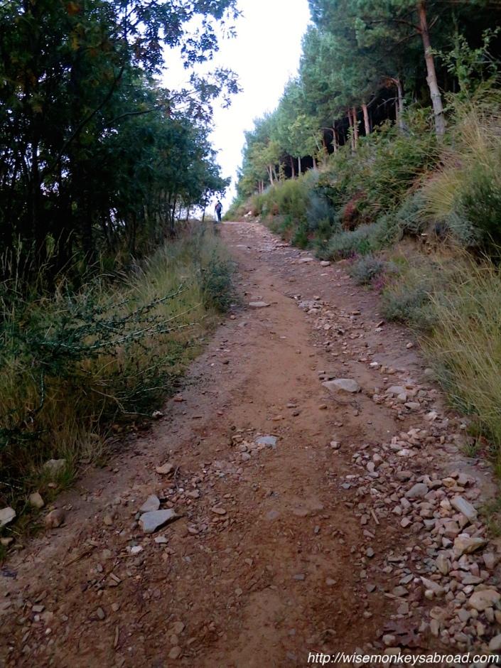 Camino7